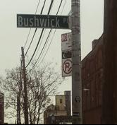 Melissa Bushwick